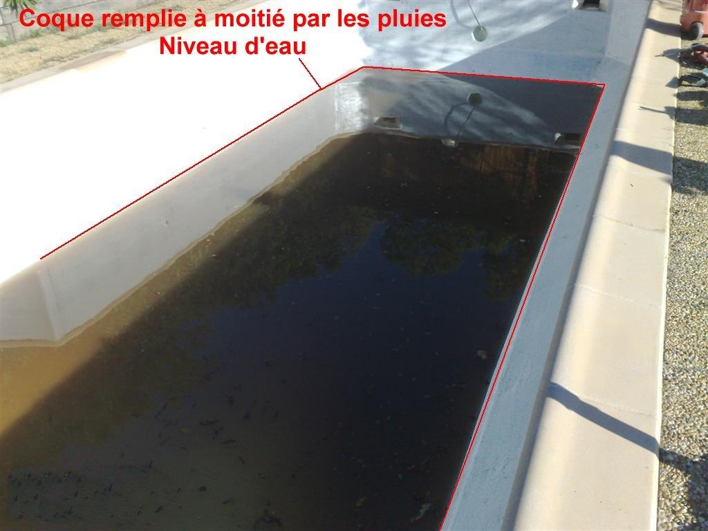 coque piscine sale